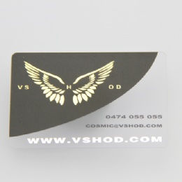 4 Color Printing Frosted Plastic Card